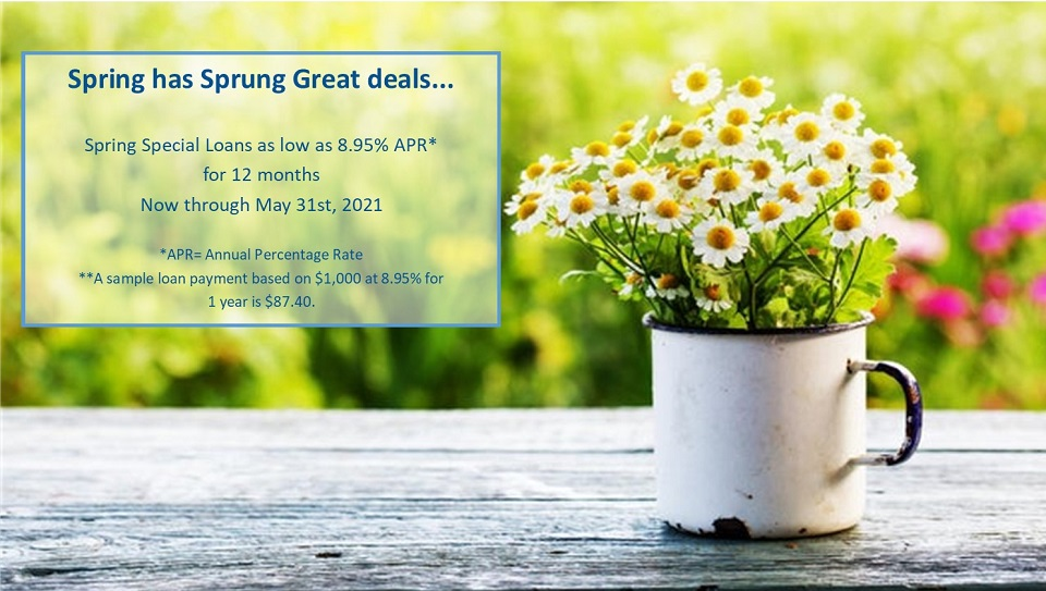 Spring special loans as low as 8.95% APR for 12 months. Avaialbe thru May 31st